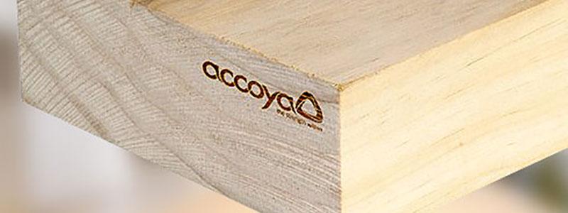 Wat is Accoya?
